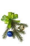 Ponga verde la ramificación del arqueamiento y del piel-árbol Imágenes de archivo libres de regalías