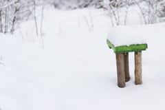 Ponga verde la silla en la nieve Fotografía de archivo