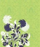 Ponga verde la tarjeta de la invitación Fotos de archivo