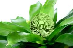 Ponga verde la tecnología ilustración del vector