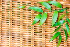 Ponga verde las hojas en la madera de mimbre Fotos de archivo
