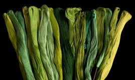 Ponga verde los hilados coloreados Foto de archivo libre de regalías