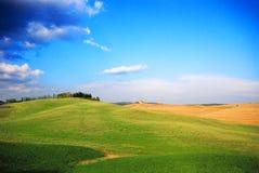 Ponga verde los prados Fotografía de archivo