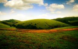 Ponga verde los prados Imagen de archivo libre de regalías