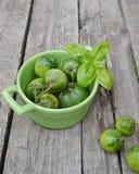 Ponga verde los tomates Imagen de archivo