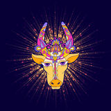 Pongal floral shiny star with cow Royalty Free Stock Photo