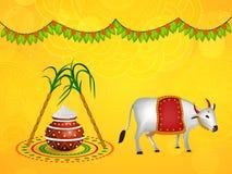 Pongal-Hintergrund Stockfotos