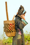 PONGSALI, LAOS - APRIL 2014: einheimisches Stammes- Akha-Dorf Lizenzfreie Stockfotografie