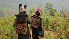 PONGSALI, LAOS - APRIL 2014: indigenous native tribal people stock footage