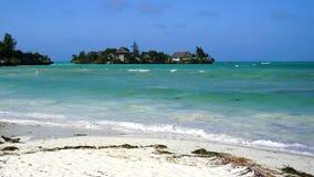 Pongwestrand, Zanzibar stock afbeeldingen