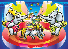 Poni. Elephants and pony clown juggling balls in the arena in the spotlight spotlights Stock Image