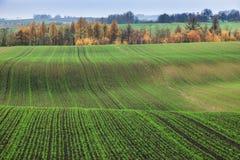 Ponidzie panorama during fall Royalty Free Stock Photos