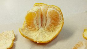 Ponkan Tangerine Stock Photography