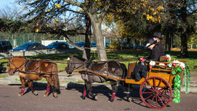 Ponnyer på den Paris hästen ståtar Royaltyfri Fotografi