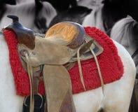 ponnyrittsadel royaltyfri bild