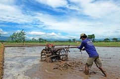 Ponorogo. INDONESIA - APRIL 13, 2014: Farmer plowing his field with a tractor in Gontor Village, , East Java, Indonesia Royalty Free Stock Photo