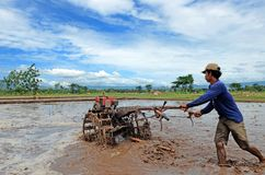 Ponorogo. INDONESIA - APRIL 13, 2014: Farmer plowing his field with a tractor in Gontor Village, , East Java, Indonesia. Photo taken on: April 13st, 2014 Stock Photography
