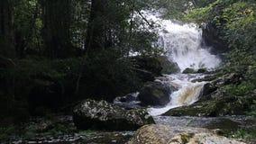 Ponpobmai waterfall in Phu Kradueng National Park, Loei province, Thailand stock video footage