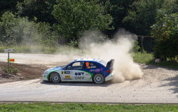 Pons WRC 2005 Germany. World Rally Cup, WRC 2005 in August Germany on the Moselland Section (RUWERTAL) close to Trier - Treves Stock Photography