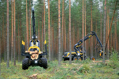 Ponsse Forwarder and Harvester Working in Forest royalty free stock photos