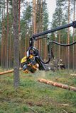 Ponsse Harvester Head Cutting Wood Royalty Free Stock Images