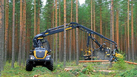 Ponsse Harvester Scorpion at Work Stock Photo