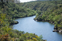 Ponsul flod i området var den möter Tagus River i Beira Baixa, Castelo Branco, Portugal Royaltyfri Fotografi