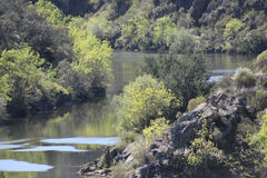 Ponsul River, tributary of Tagus, Portugal. View of Ponsul River in a Spring day on the road between Castelo Branco and Malpica do Tejo and Monforte da Beira Royalty Free Stock Photo