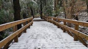 Pont à Cascata de Los Cantaros Images stock