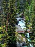 Pont à travers des automnes de crique de lac Photographie stock libre de droits