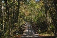 Pont à travers le bayou Images stock