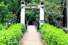 Pont à travers le jardin vert photographie stock libre de droits