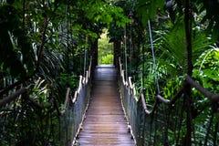 Pont accrochant à la chapelle de Caleruega, Tagaytay Photos stock