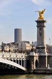 Pont Alexandre III och Montparnasse torn Royaltyfri Bild