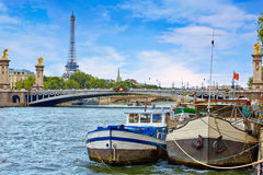 Pont Alexandre III in Paris France over Seine Stock Image