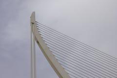 Pont λ ` Assut de λ ` ή, η γέφυρα στην πόλη των τεχνών και επιστήμη Στοκ Εικόνες