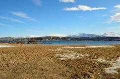 Pont au-dessus d'île de baleine en soleil Photographie stock libre de droits