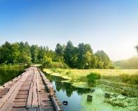 Pont au-dessus d'une rivière marécageuse Photo stock