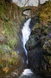Pont au-dessus de cascade Images stock