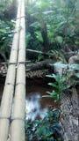 Pont au-dessus de l'eau calme Photos libres de droits