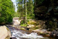 Pont au-dessus de la rivière vieille dans les bois images stock