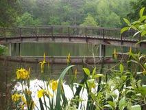 Pont au-dessus de lac Photographie stock