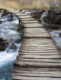 Pont au-dessus de rivière sauvage Photos libres de droits