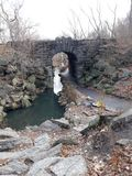 Pont Central Park Photos libres de droits