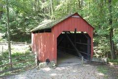 Pont couvert de banque de pin au rockshelter de Meadowcroft Photographie stock libre de droits