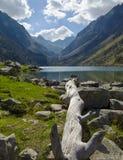 """Pont dÂ'Espagne †""""Lac DE Gaube †""""Oulettes DE Gaube, Nationale des de Pyreneeën van Parc Royalty-vrije Stock Foto's"""