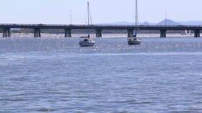 Pont 1 d'île de Bribie clips vidéos