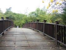 Pont d'amour Photographie stock