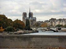 从Pont d ` Austerlitz的Parigi - Notre Dame 库存照片