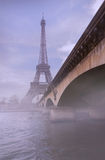 Pont d`Iéna bridge and Eiffel Tower Royalty Free Stock Photo